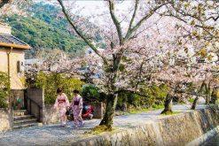 Active Japan School Trip 10 Days