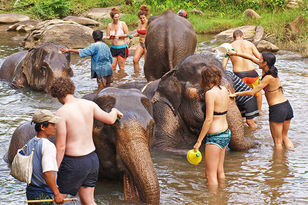 Chiang-Mai-Elephant-Camp