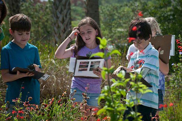 Field Trip Idea For Kindergarten Students