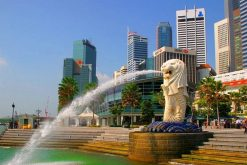 Highlights of Singapore School Trip – 7 Days