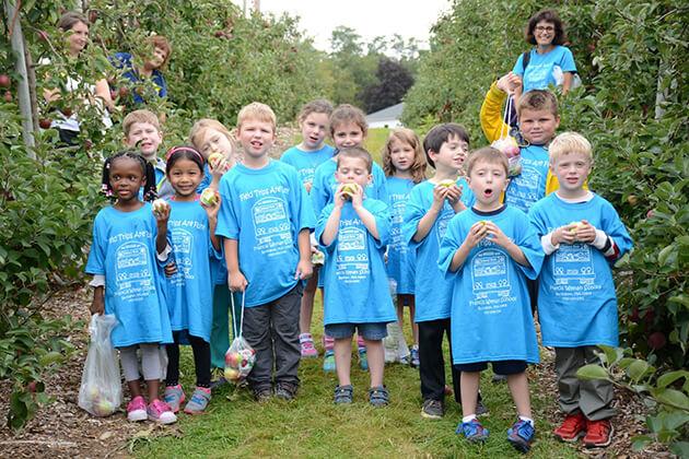 Importance Of Field Trips For Kindergarten
