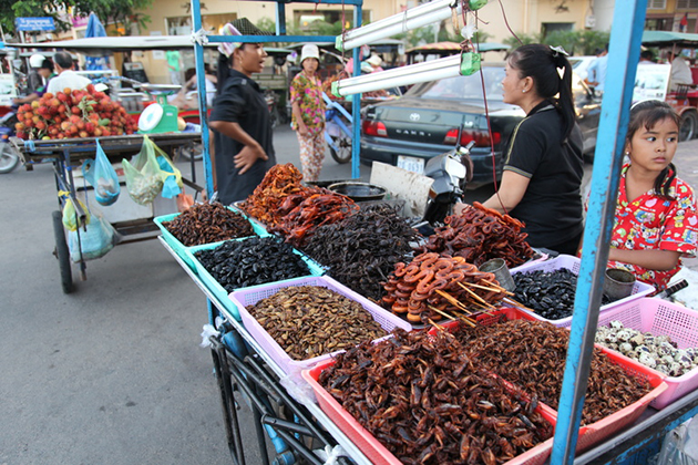 Fried insects for sale at Skoun Village