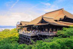 Kiyomizu Temple discovery in Japan school trip