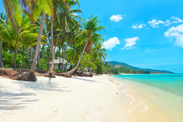 Koh Samui - best destination in Thailand school tour