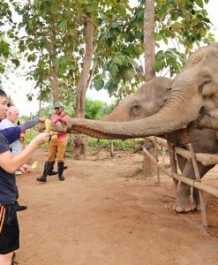 Laos Adventure School Trip