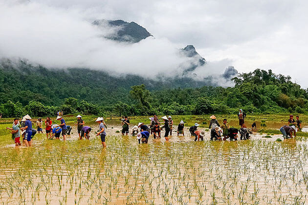 Laos-School-Tours-and-Student-Trips
