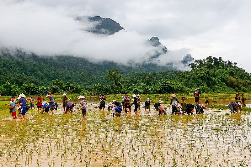Laos School Tours and Student Trips