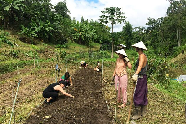 Organic Farm in Chiang Mai for student visit