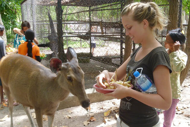 Phnom Tamao Wildlife Rescue Centre-best spot to visit in Cambodia school tour