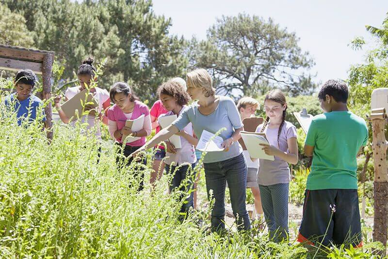 Safety Tips for Successful Field Trips