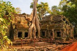 Siem Reap - the City of Angkor