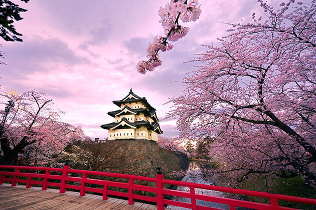 Spectacular view of Japan