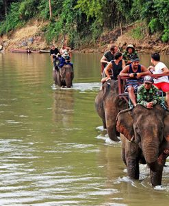 Students ride elephant at Elephant Conservation Centre