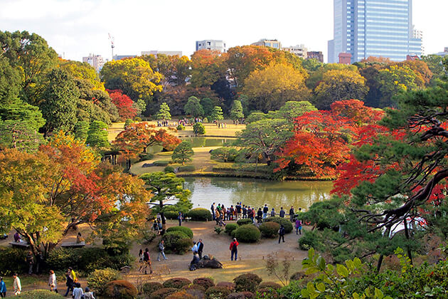 Students visit Rikugien Japanese Landscape Garden