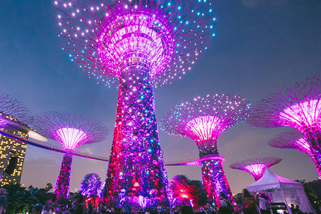 Super Tree Grove Light Show in Singapore
