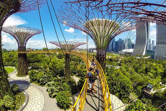 explore Garden by the Bay from Singapore school trip