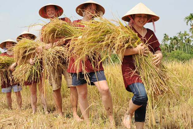 get authentic experience from Vietnam school trip