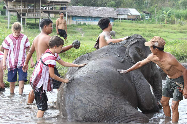 students join Elephant Camp in school trip to Thailand